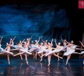 lacul lebedelor balet sibiu 5