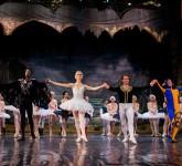 lacul lebedelor balet sibiu 9