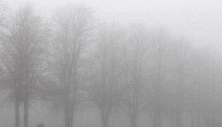 Cod galben de ceață, chiciură și polei în Sibiu și alte 11 județe din țară