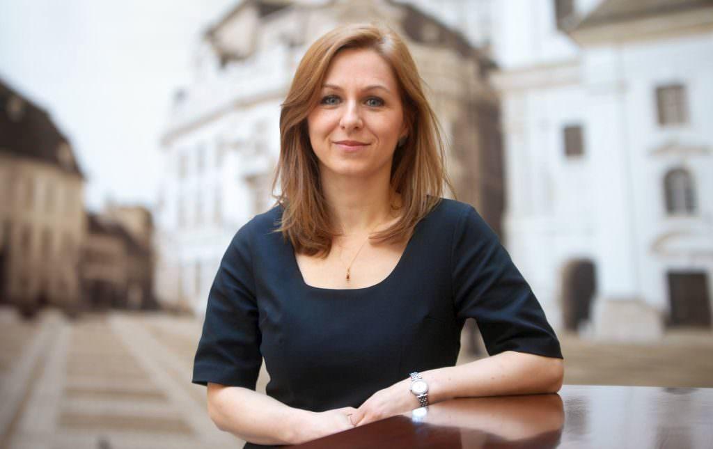 administrator public Ioana Leca
