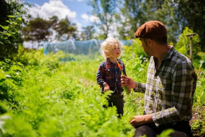 simon paulin organic farming 5793