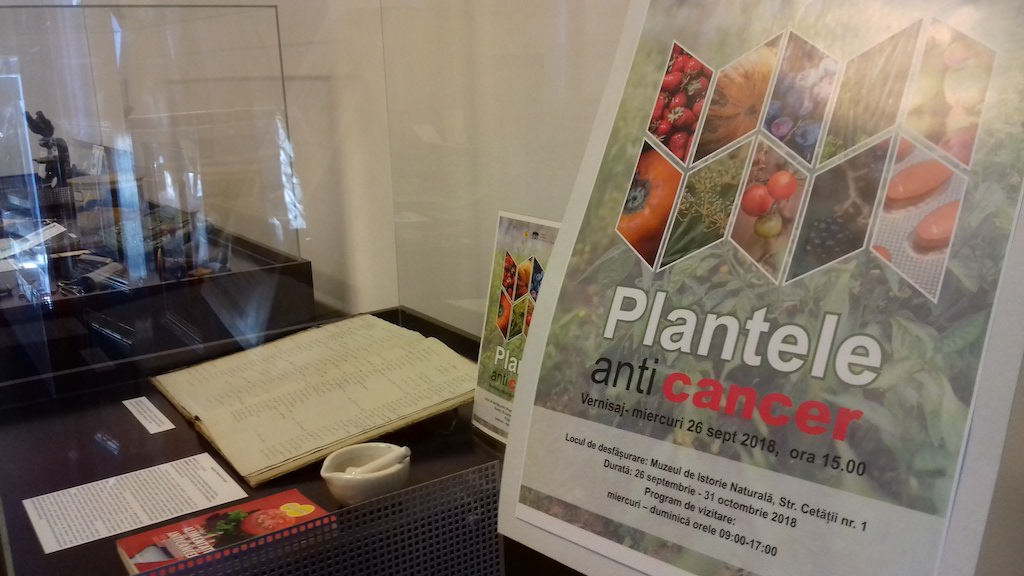 foto expozitie plante anticancer