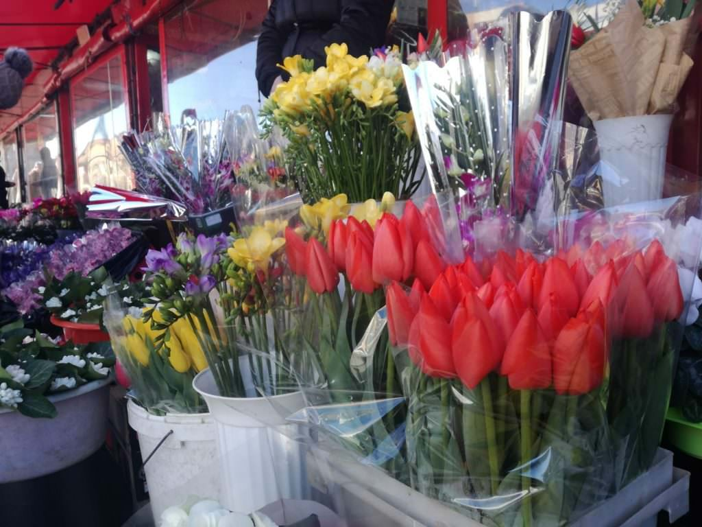 8 martie flori 14