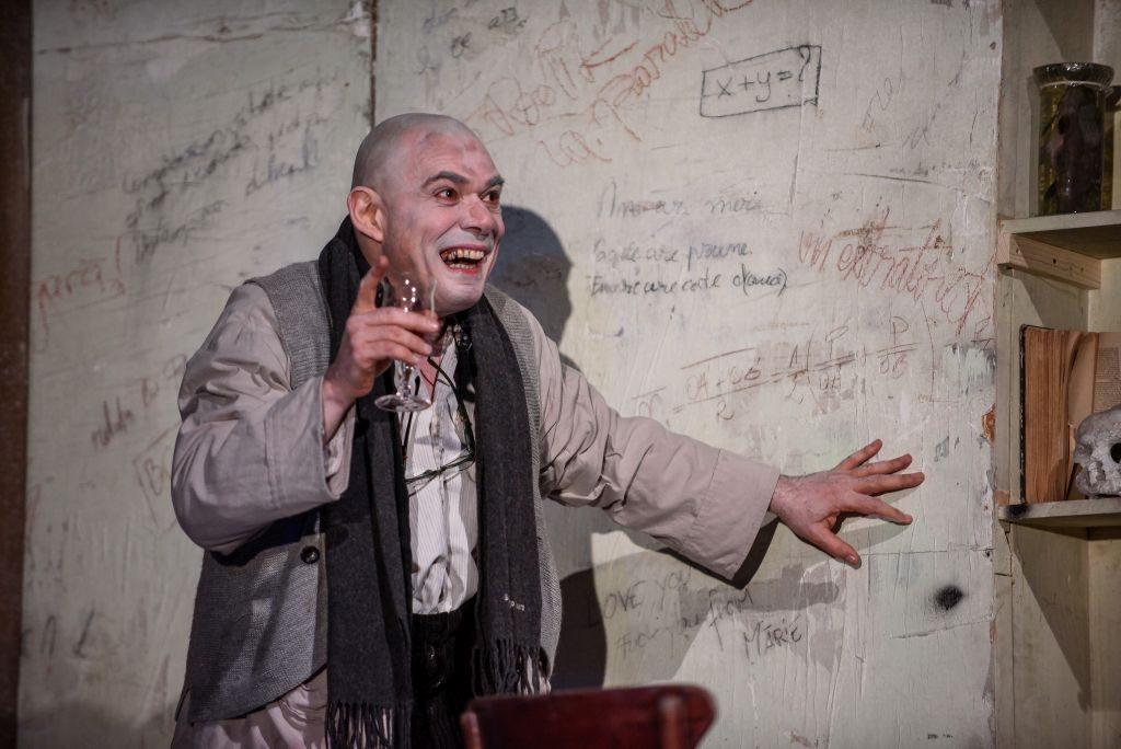 Faust regia Silviu Purcărete cu Ofelia Popii și Miklos Bacs 29