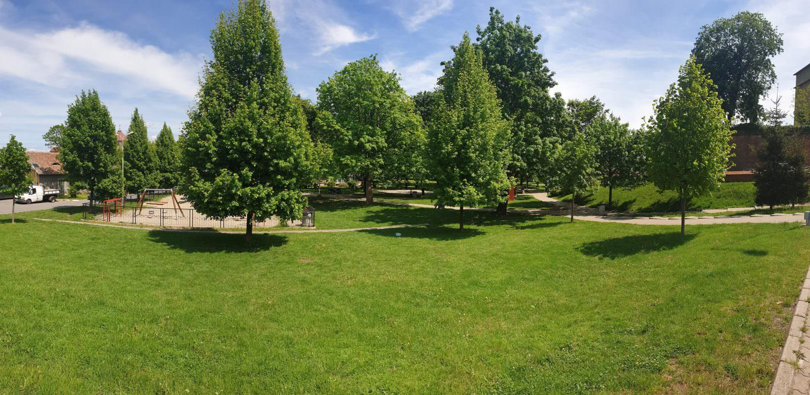 parcul tineretului foto 1