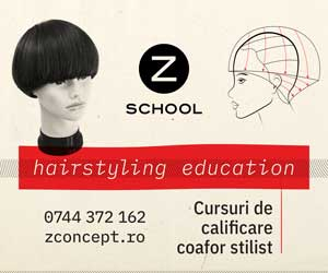 Z Concept