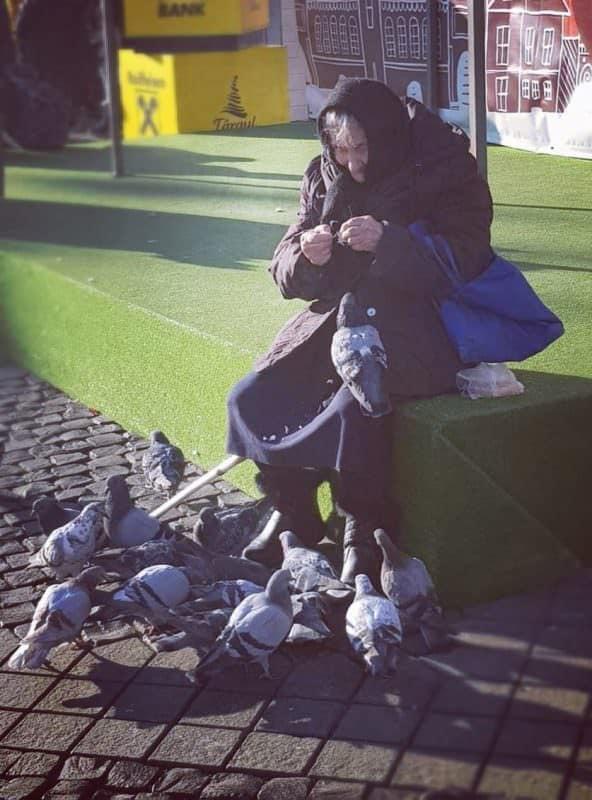 doamna cu porumbei