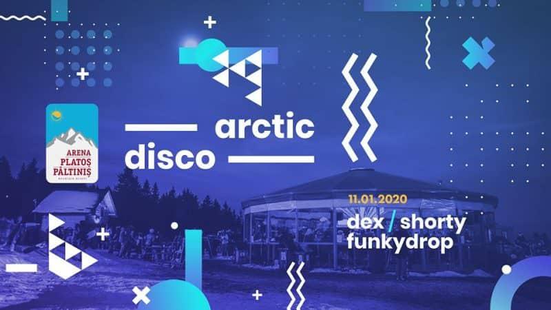 arctic disco3