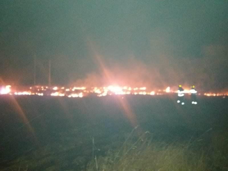 incendiu vegetatie noapte1
