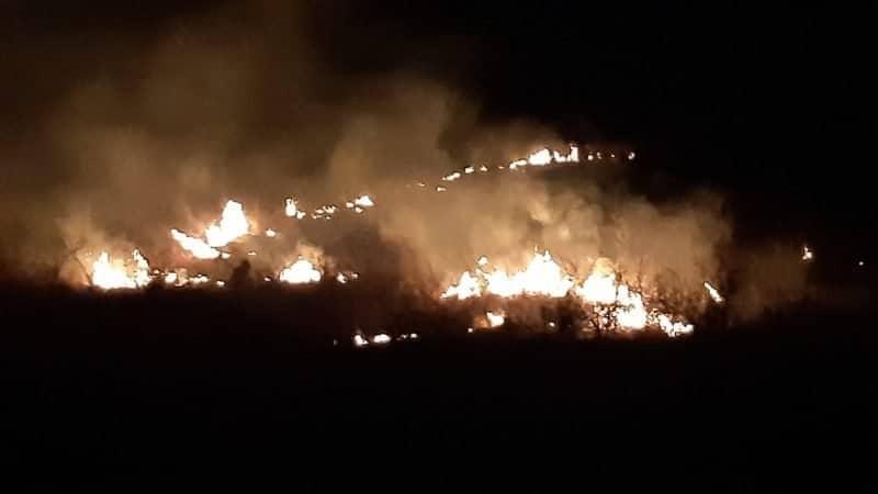 incendiu vegetatie2
