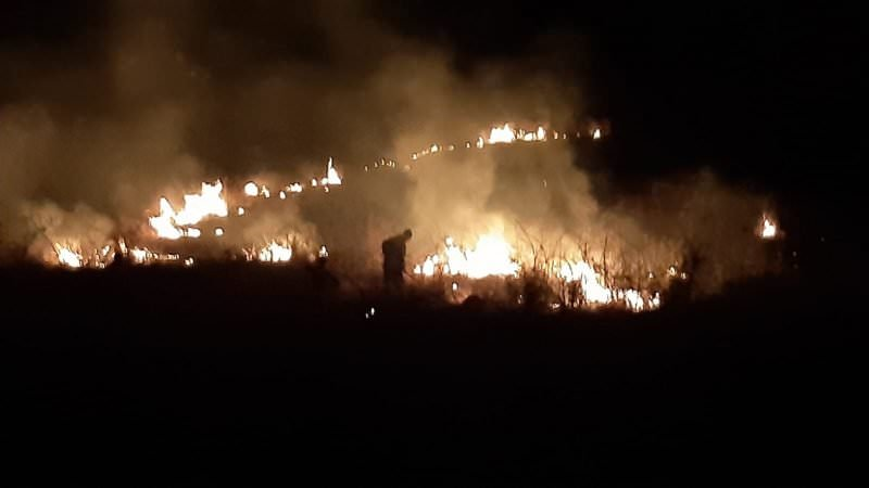 incendiu vegetatie3
