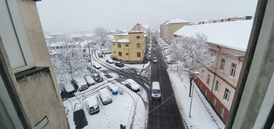 iarna 1