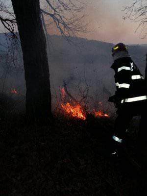 incendii vegetatie 2