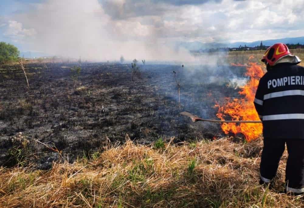 incendiu vegetatie1 2