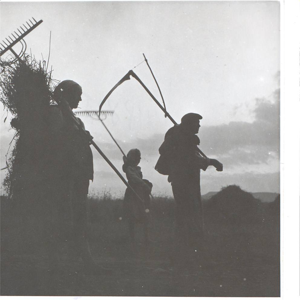 Arhiva foto Muzeul ASTRA 2