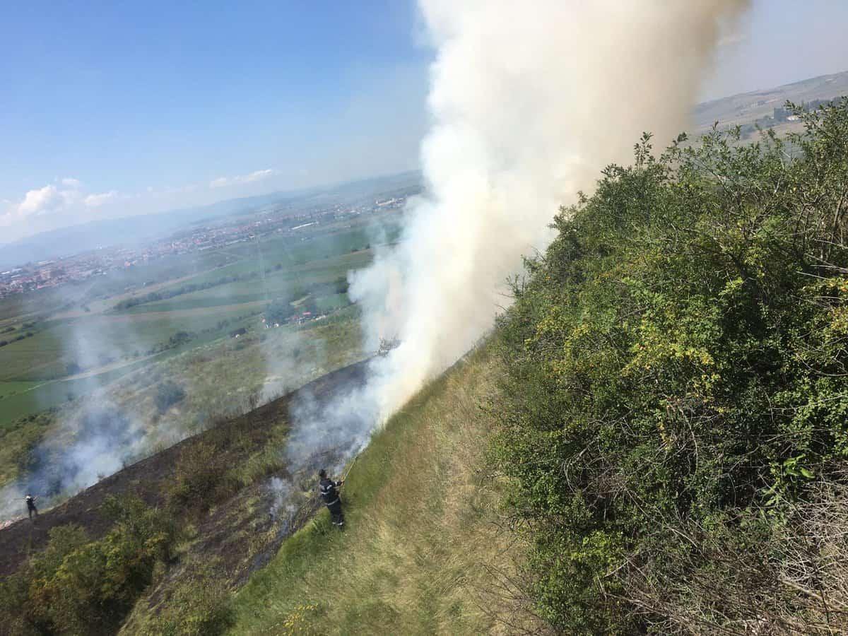 incendiu vegetatie1
