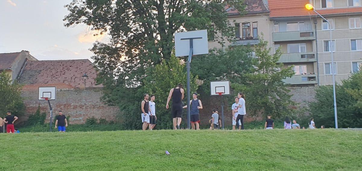 parc 6