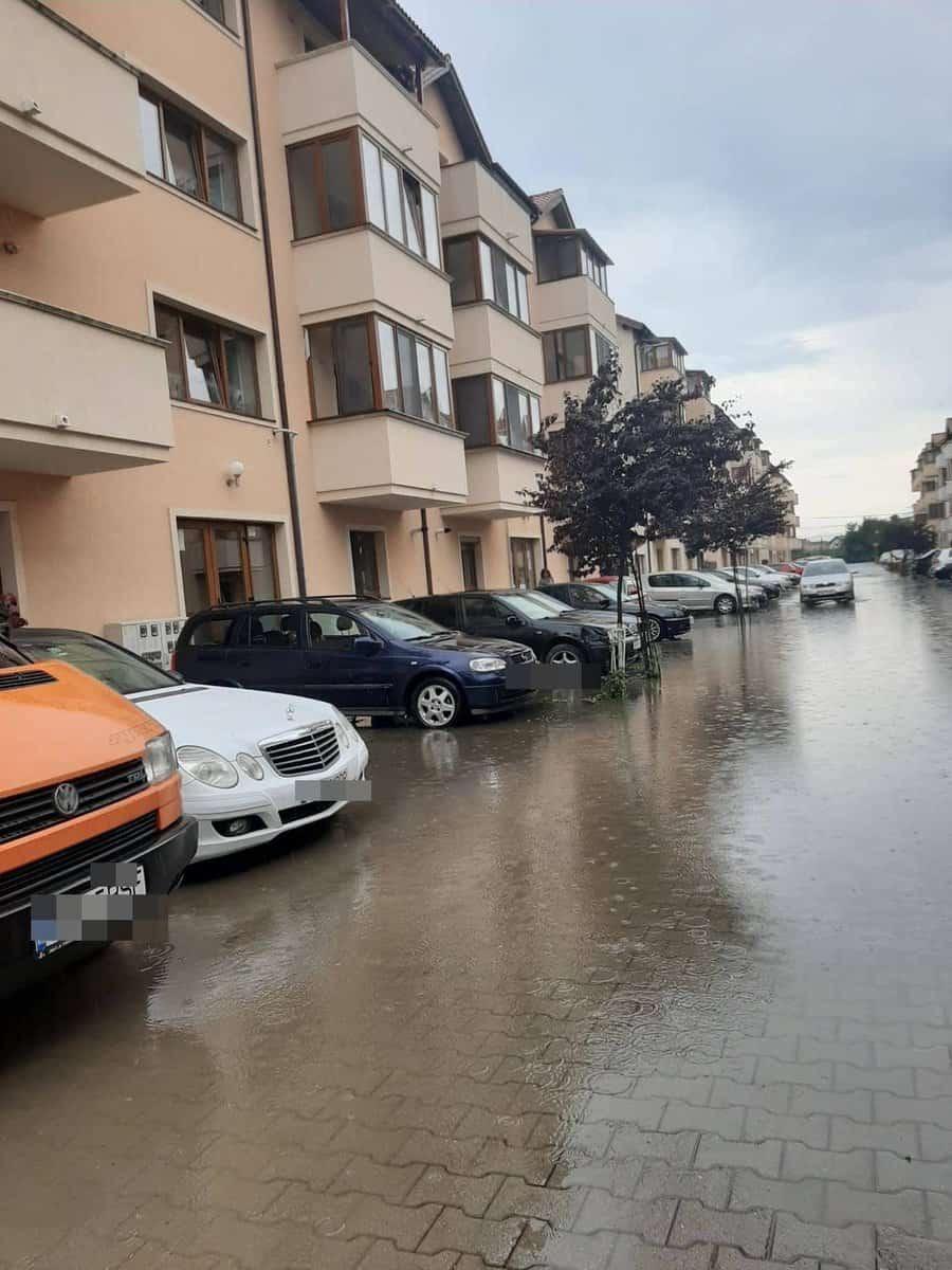 inundatie gusterita