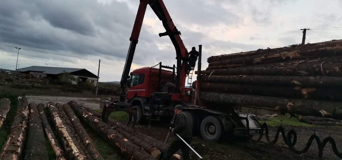 furat lemn 1