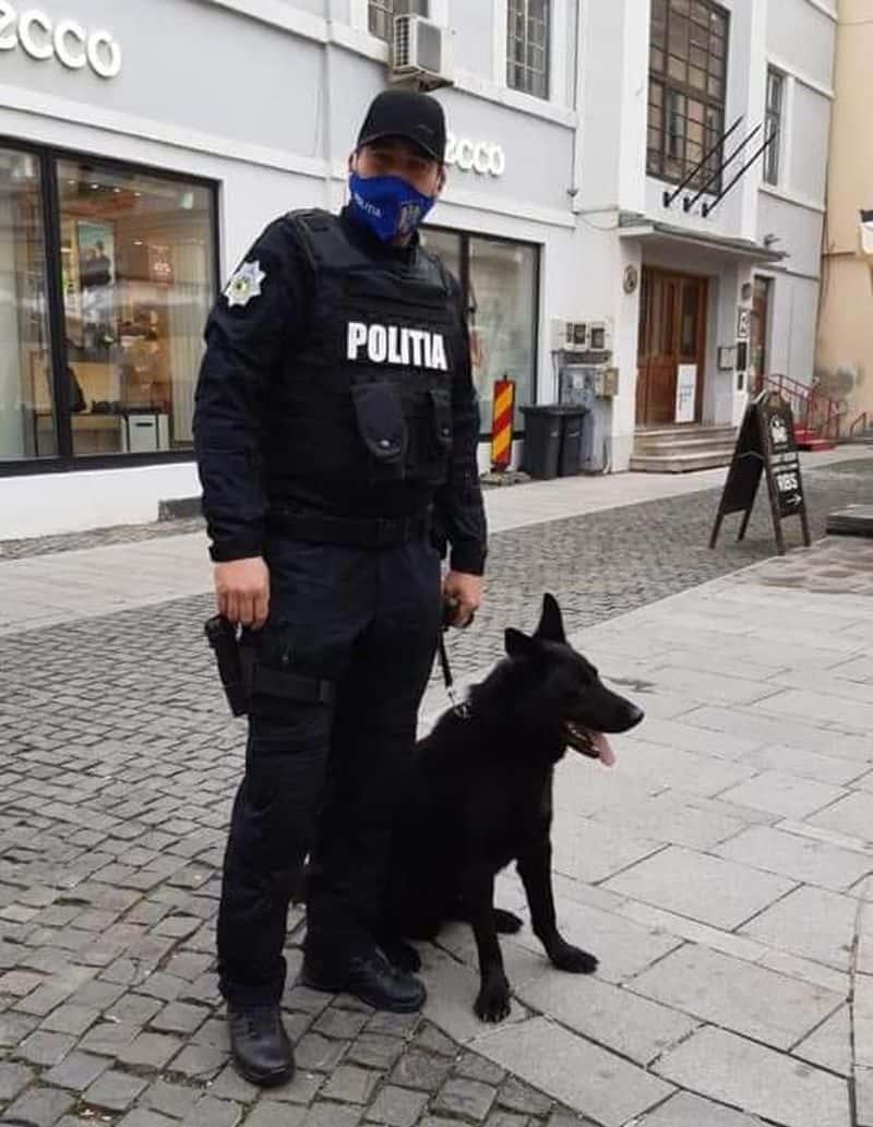 politia control amenzi 1 1