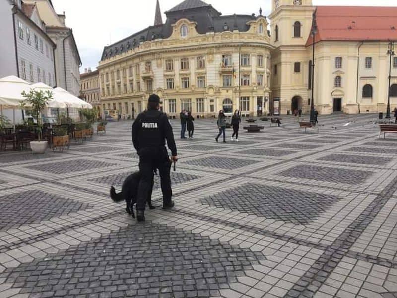 politia control amenzi 1