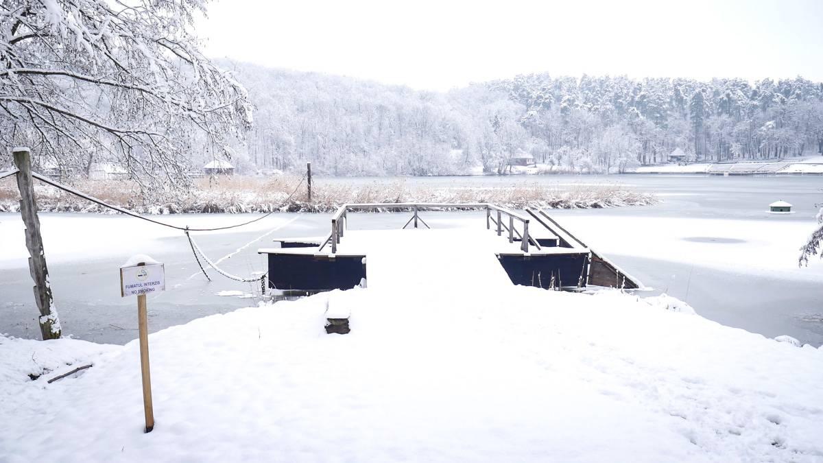 Muzeul Satului Iarna 19