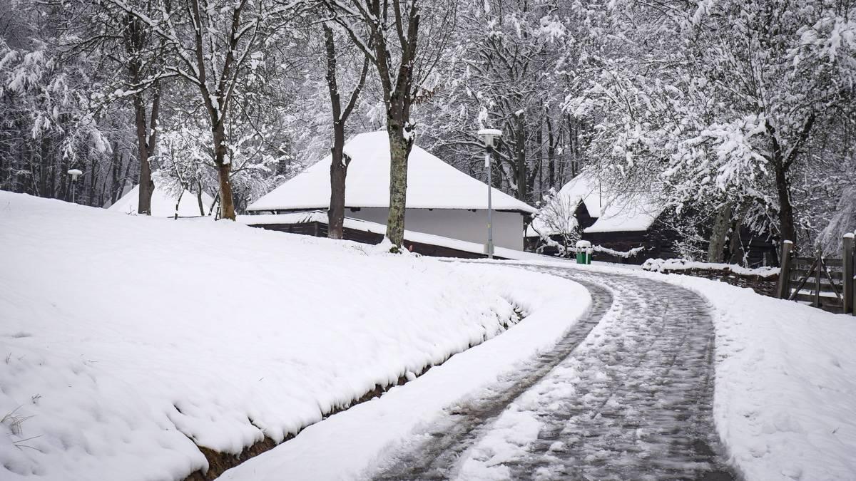 Muzeul Satului Iarna 28
