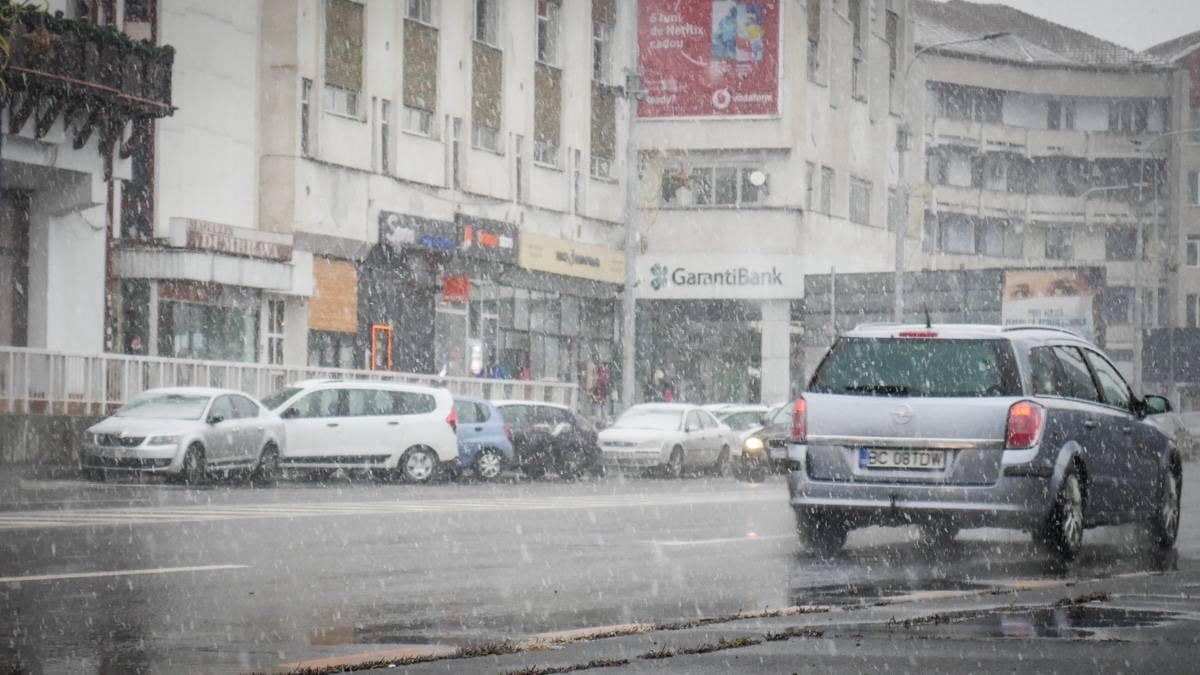 Ninsoare Sibiu 12