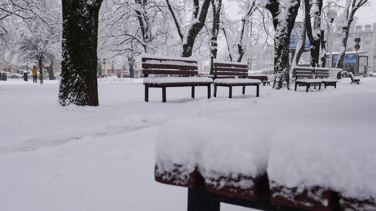Ninsoare Sibiu 19 1
