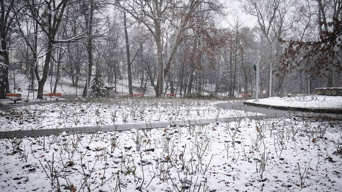 Ninsoare Sibiu 6