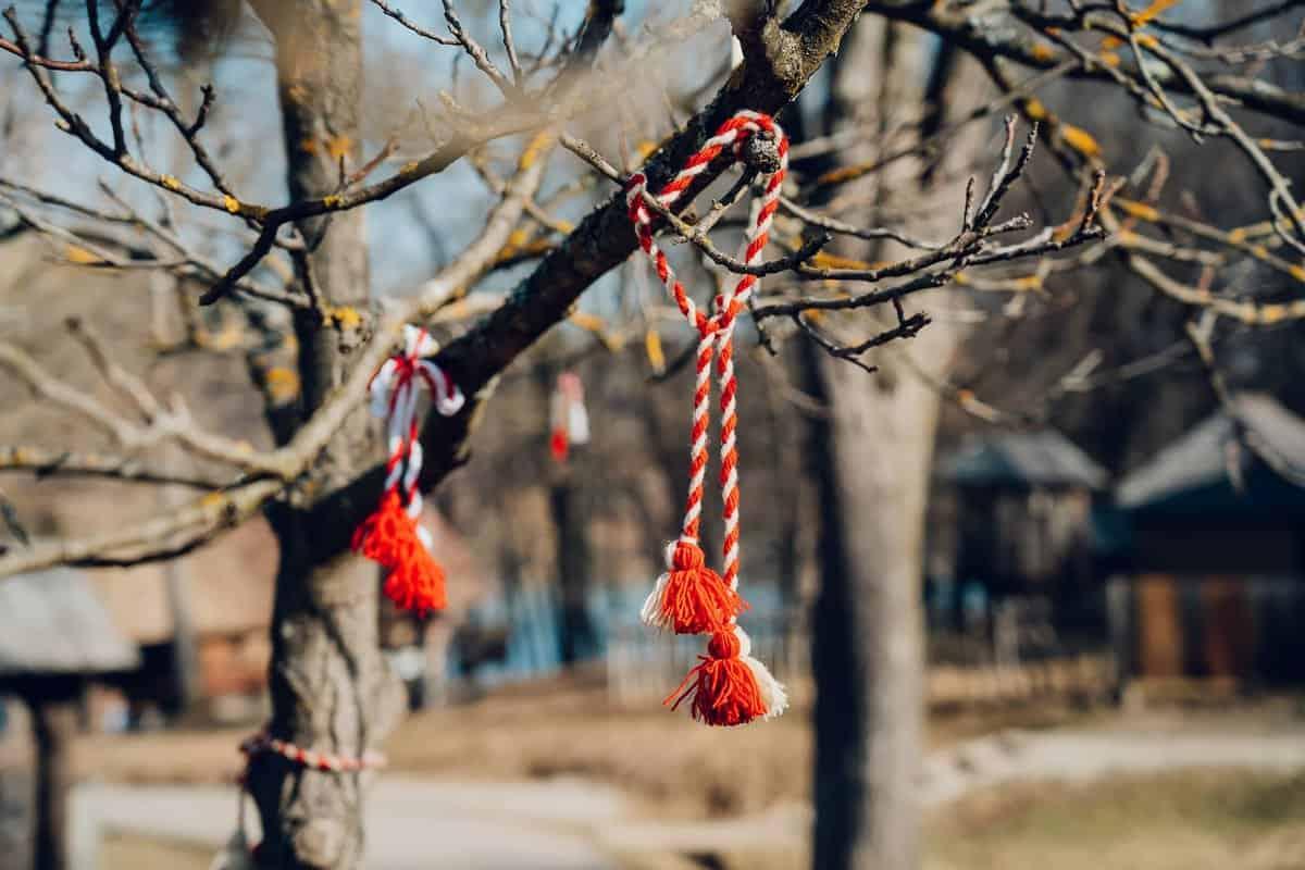 Pomul gandurilor bune 7