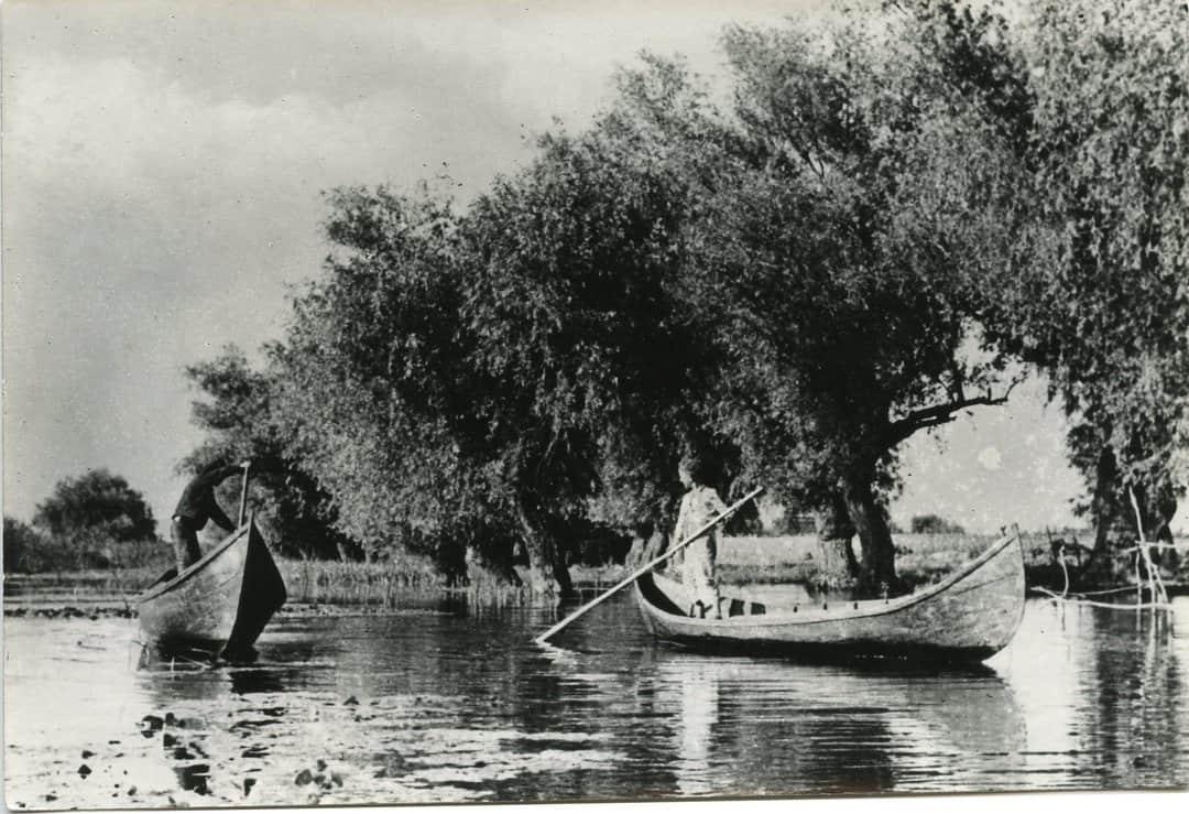 47983 Delta Dunarii