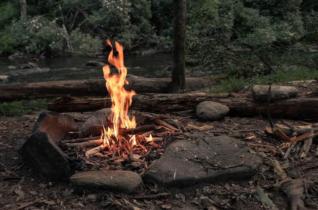 13 modalitati uscare lemn corect putere calorica mare