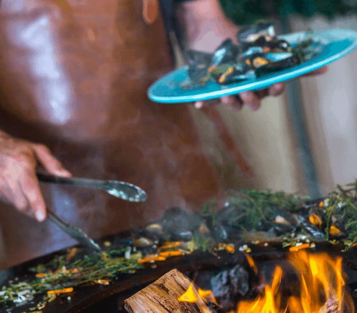 11 gatire carne gratar plita vatra corten ofyr